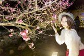冬なのに花真っ盛り!?桜もひまわりもコスモスも・・沖縄の冬に楽しめる花祭り