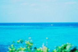 """【#残したい沖縄 リレーエッセイVol.4】さまざまな""""青""""がまじりあう世界"""