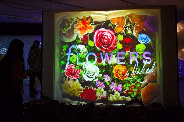 flowers_sm